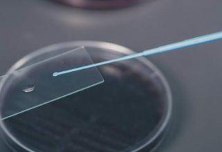 Control, prevención y análisis de Legionella